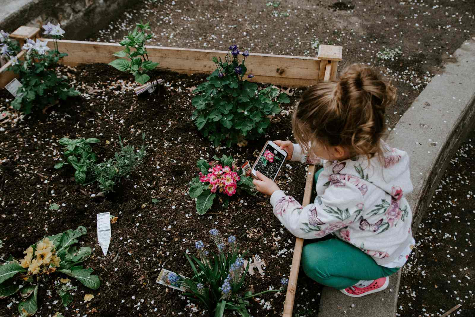 Young child crouched over a box garden taking a photo of flowers with a phone. Photo by Kelly Sikkema on Unsplash.